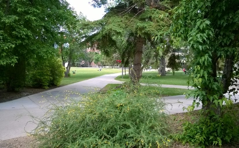 2018 Campus Water Features: Flora and Fauna Tour
